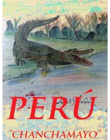 Perú HB. CHANCHAMAYO