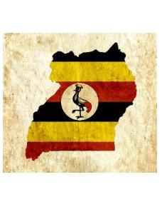 """Uganda """"Bugisu AA"""""""